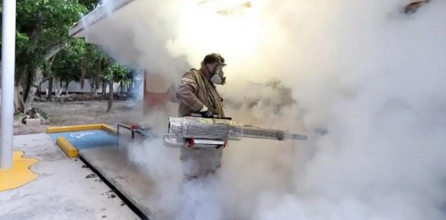 Fumigation in Puerto Morelos
